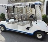 Electric Golf Cart / Sightseeing Car (Made in Sri Lanka)