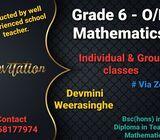 Mathematics Group & individual classes