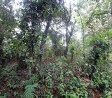 1 Acre Land for sale in Malagala, Padukka.