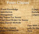 Forex Class EveryOne
