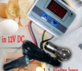 incubator controller 10A 12V DC