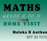 maths class- home visit grade 3 up to o/l