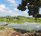 Waterfront Land for Sale in Rajagiriya [LS15]