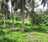 Land for Sale - Meegoda
