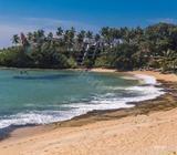 Beach front 100 Perch Land