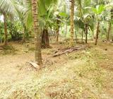 Land in Padukka
