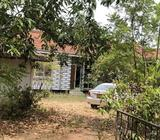 House with mixed crop land in Chilaw