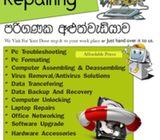 Computer Repair Hone Visit