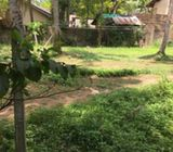 Land forSale in Angoda