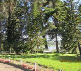 Nuwara Eliya Bungalow with panoramic View
