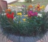 Garden Service (chamath service