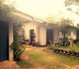 House with 30 Perch Land for Sale in Kadawatha (ganemulla Road
