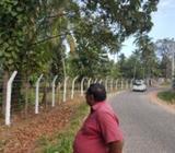 Coconut Estate for Sale Kurunagala