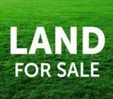 Land for Sale at Pannipitiya
