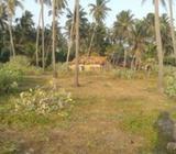 Commercial property for sale at Ja-ela