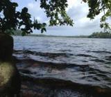 Hikkaduwa Lake Front land Property