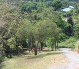 Kandy - Peradeniya Land