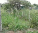 Land for Sale Ja Ela Town