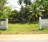 Land for Sale Wellwatta Main Road Facing