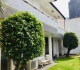 Valuable Property for Sale in Colombo 4