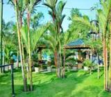 Hotel for sale - Batticaloa