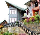 Holiday Apartment in Nuwara Eliya