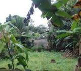 Land For Sale in Pitipana Homagama