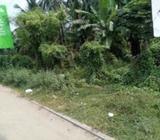 Commercial Property Land for sale in Ja-ela
