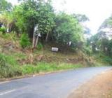 Land for Sale facing to Dambulla-Kandy Road