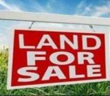 Land for Sale in Amunugama Lewalla