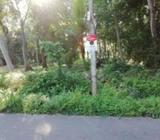 15 Perch Land for Sale close to Ananda Balika National School