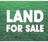 17 P SUPER COMMERCIAL LAND COL 01