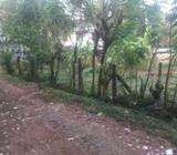 Gampaha Imbulgoda Land