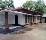House for rent Anuradhapura