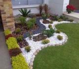 Ssp Gardening service
