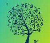 ගණිතය Paper Classes - ( Grade 6-11