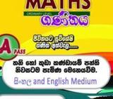 Maths and science O/L