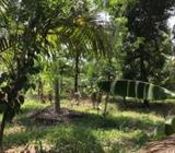90 Perches Land for Sale in - Ranala