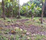 235 Perch Bare Land for Sale at Galle - Habaraduwa