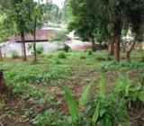 Flat Land For Sale In Kandy