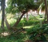 12 P Land for Sale in Ratmalana