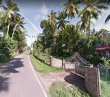 56 Perches Land for Sale at Minuwangoda
