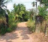 Commercial Lands with annex for Rent/ Lease in Andiambalama, Katunayake