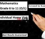 mathematics - grade 6 to 11 (o/l) - individual home visit- sinhala medium - around in kandy- best re