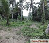 Land With A House For Sale in Yakkala