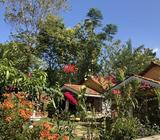 functional luxurious villa with land for sale udawalawe