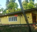 house in nugegoda for rent