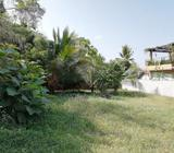 54.5 Perch Land for Sale in Nugegoda Possibility for Subdivision