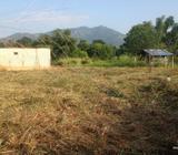 දඹුල්ලේ ඉඩමක් විකිණීමට - Land for sale in Dambulla