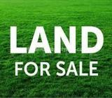 Land for sale in KOTTE